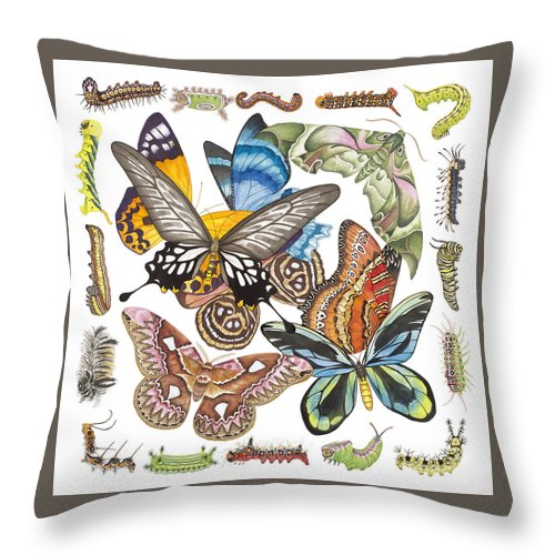 Butterflies Throw Pillow featuring the painting Butterflies Moths Caterpillars by Lucy Arnold