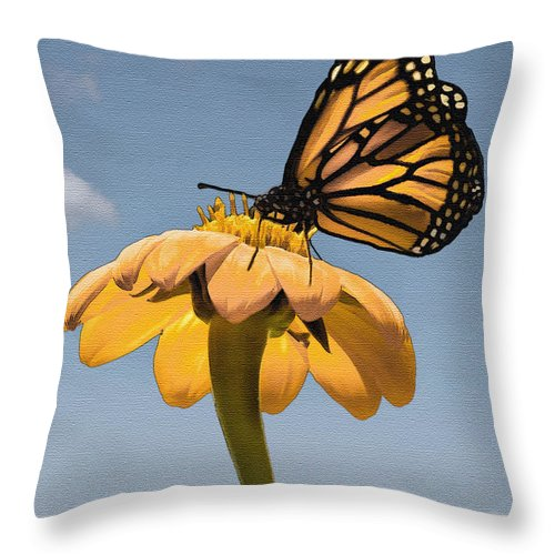Butterfly Throw Pillow featuring the photograph Butterfly And Flower by Sharon Foster