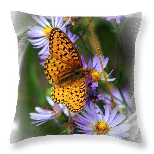 Butterfly Throw Pillow featuring the photograph Butterfly Bliss by Marty Koch