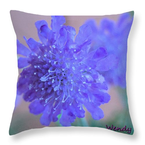 Butterfly Throw Pillow featuring the photograph Butterfly Catcher by Wendy Fox