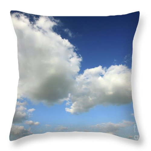 Sky Throw Pillow featuring the photograph Butterfly by Deborah Brodie