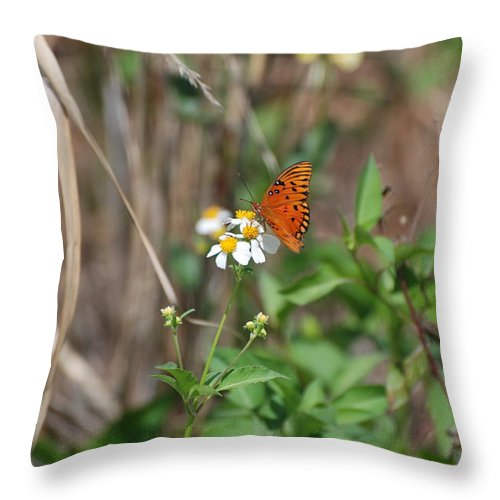 Butterfly Throw Pillow featuring the photograph Butterfly Flower by Rob Hans