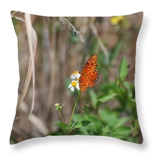 Nature Throw Pillow featuring the photograph Butterfly On Flower by Rob Hans