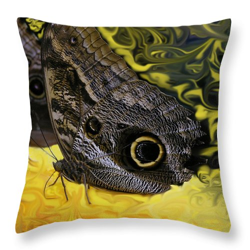 Butterfly Throw Pillow featuring the photograph Butterfly Reflections by Louise Magno