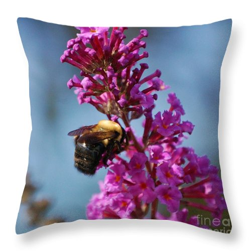 Bee Throw Pillow featuring the photograph Buzzed by Debbi Granruth