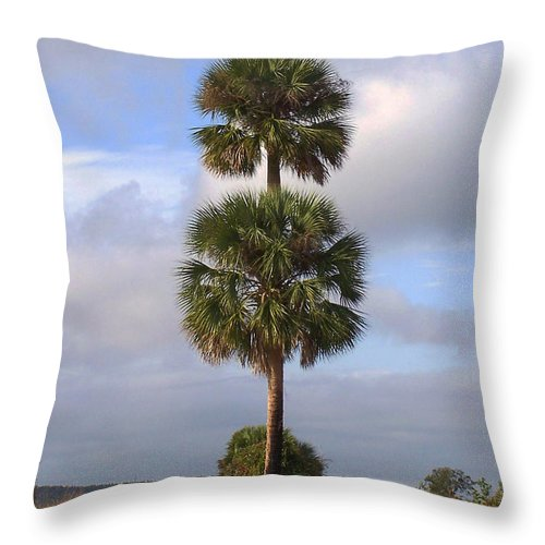 Nature Throw Pillow featuring the photograph Cabbage Palms by Peg Urban