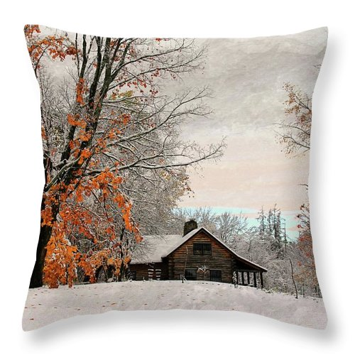 Landscapes Throw Pillow featuring the photograph Cabin Fever by Laurie Baird
