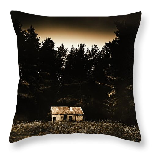 Woods Throw Pillow featuring the photograph Cabin In The Woodlands by Jorgo Photography - Wall Art Gallery