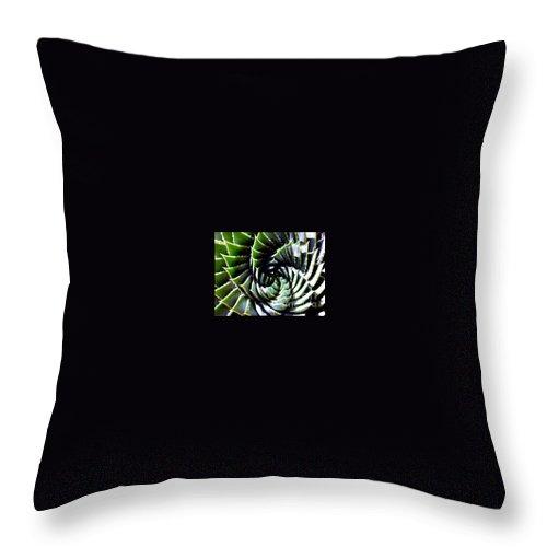 Cactus Throw Pillow featuring the photograph Cactus by Dragica Micki Fortuna