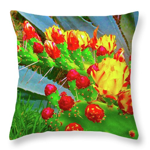 Flower Throw Pillow featuring the photograph Prickly Pear Cactus Flowers by Jerome Stumphauzer