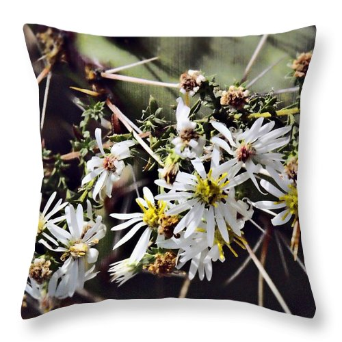 Cactus Throw Pillow featuring the photograph Cactus Flowers by Scott Wyatt