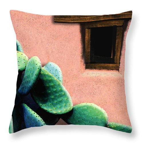 Cactus Throw Pillow featuring the photograph Cactus by Paul Wear