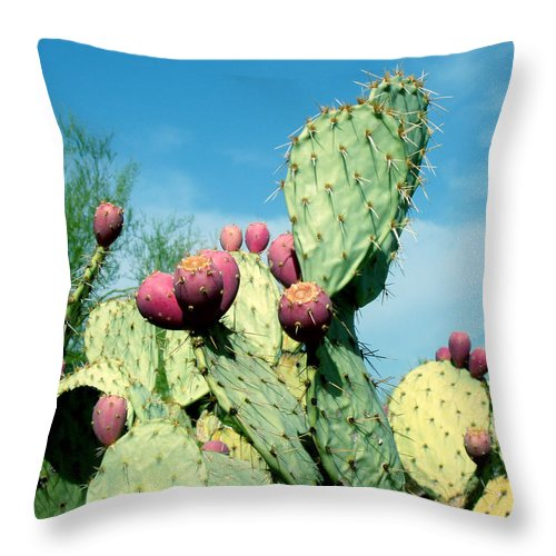 Cactus Throw Pillow featuring the photograph Cactus by Wayne Potrafka