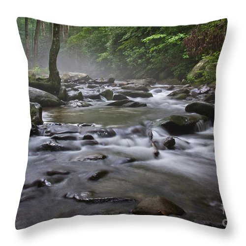 Cades Throw Pillow featuring the photograph Cades Cove Magic by Douglas Stucky