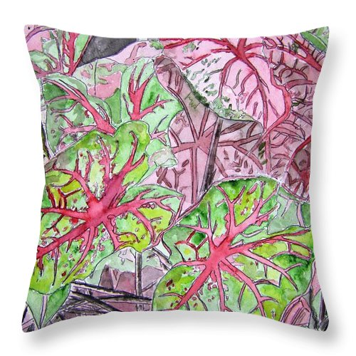 Watercolour Throw Pillow featuring the painting Caladiums Tropical Plant Art by Derek Mccrea