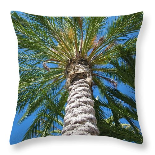 California Throw Pillow featuring the photograph California by Caroline Lomeli
