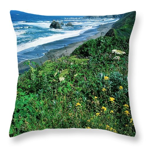 Flowers Throw Pillow featuring the photograph California Coast by Ronnie Glover