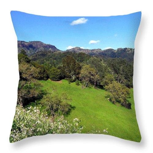 California Throw Pillow featuring the photograph California Highlands by Will Borden