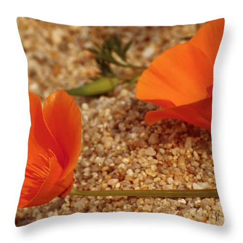 Poppy Throw Pillow featuring the photograph California Poppies by Karen Ulvestad