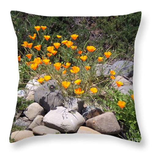 Artoffoxvox Throw Pillow featuring the photograph California Poppies Photograph by Kristen Fox