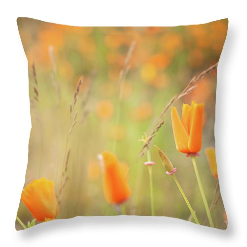 Flora Throw Pillow featuring the photograph California Poppy Field 4 by Jill Greenaway
