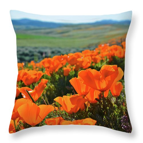 Antelope Valley California Poppy Reserve Throw Pillow featuring the photograph California Poppy Reserve by Kyle Hanson
