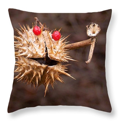 Call; Plant; Seed; Seed-pod; Pod; Phone; Personify; Jimson Throw Pillow featuring the photograph Call Me by Francesa Miller