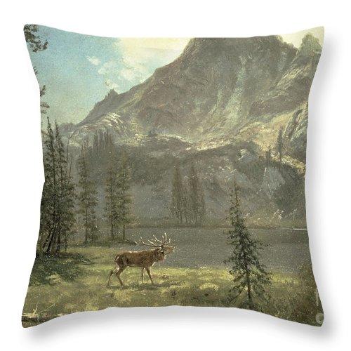 Bierstadt Throw Pillow featuring the painting Call Of The Wild by Albert Bierstadt