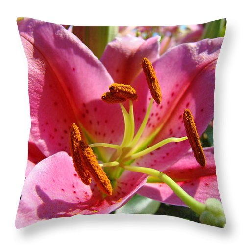 Lilies Throw Pillow featuring the photograph Calla Lily Art Prints Pink Lilies Flowers Baslee Troutman by Baslee Troutman
