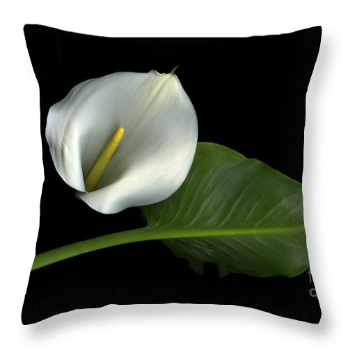 Scanography Throw Pillow featuring the photograph Calla Lily by Christian Slanec