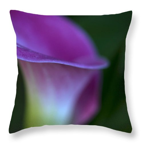 Calla Lily Throw Pillow featuring the photograph Calla Lily by Jessica Wakefield
