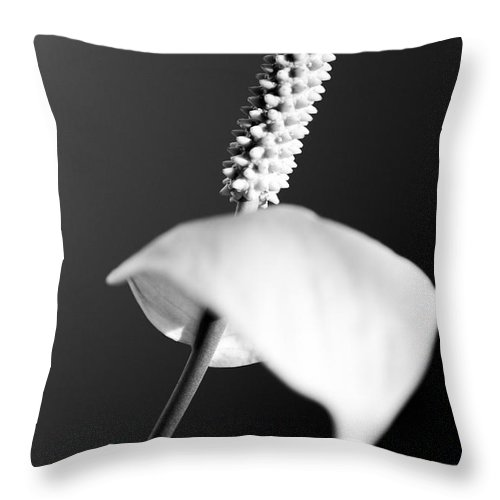 Black & White Throw Pillow featuring the photograph Calla Lily by Tony Cordoza