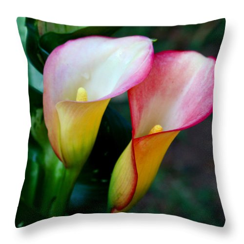 Calla Lily Throw Pillow featuring the photograph Calla Lily Twins by Paul Anderson