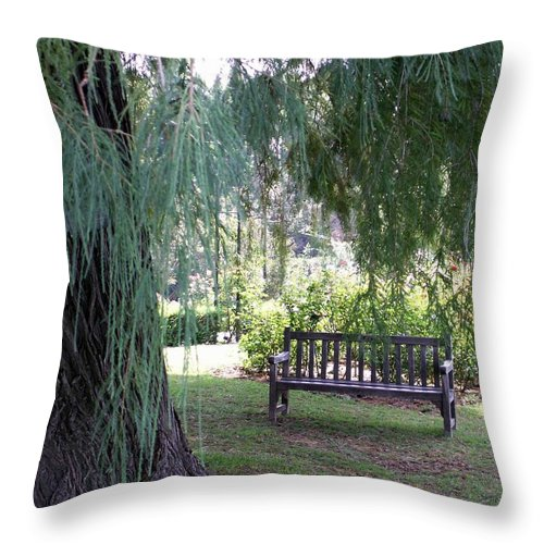 Landscape Throw Pillow featuring the photograph Calm by Amy Fose