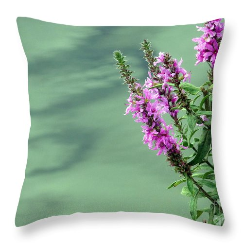 Flower Throw Pillow featuring the photograph Calm by Jo Hoden