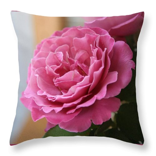 Throw Pillow featuring the photograph Calming by Luciana Seymour