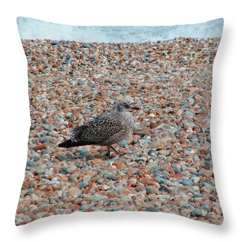 Camo Throw Pillow featuring the photograph Camo Chick by Heather Lennox