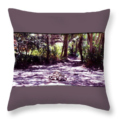 Shannon Throw Pillow featuring the photograph Camp Fire Past by Shannon Sears