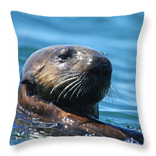 Otter Throw Pillow featuring the photograph Can I Help You? by Alison Salome