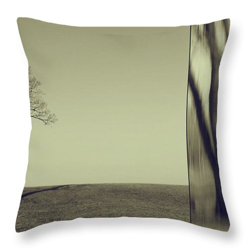 Chicago Throw Pillow featuring the photograph Can You Hear My Silent Words Whispering Along The Wind by Dana DiPasquale