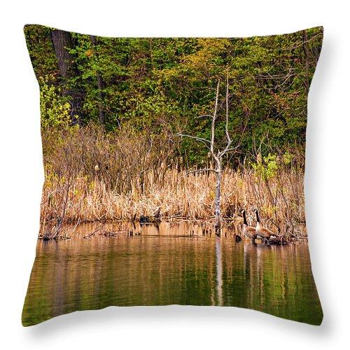 Ontario Throw Pillow featuring the photograph Canada Goose Couple by Steve Harrington
