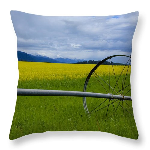 Canola Throw Pillow featuring the photograph Canola by Idaho Scenic Images Linda Lantzy