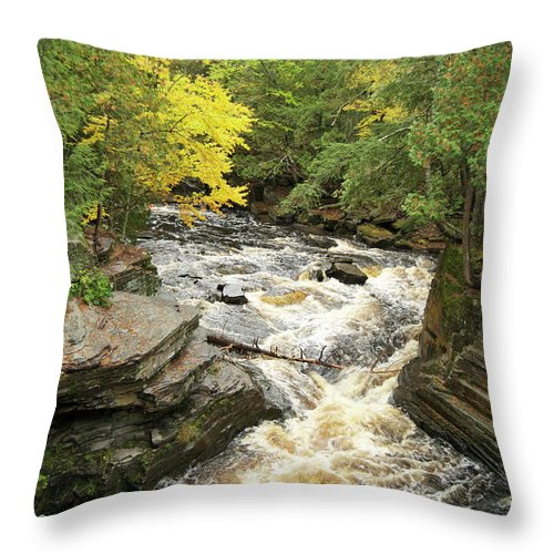 Michigan Throw Pillow featuring the photograph Canyon Falls by Michael Peychich