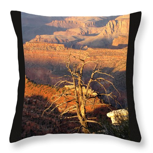 Grand Canyon Throw Pillow featuring the photograph Canyon Sunset by Cathy Franklin