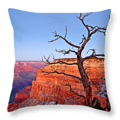 Arizona Throw Pillow featuring the photograph Canyon Tree by Peter Tellone