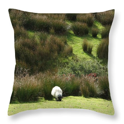 Sheep Throw Pillow featuring the photograph Caora by Kelly Mezzapelle