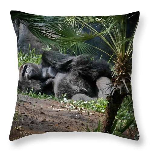 Gorilla Throw Pillow featuring the digital art Captivity Is Heartbreaking by DigiArt Diaries by Vicky B Fuller