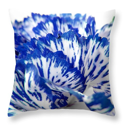 Carnation Throw Pillow featuring the photograph Carnation by Daniel Csoka