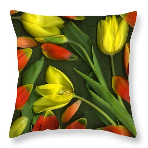 Red Throw Pillow featuring the photograph Carnival by Christian Slanec