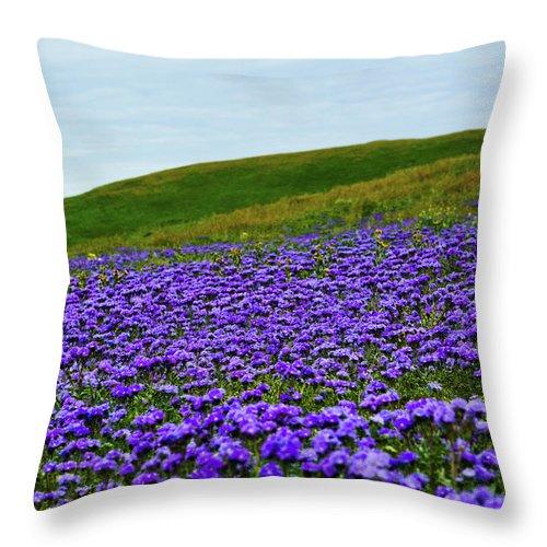 Carrizo Plain National Monument Throw Pillow featuring the photograph Carrizo Plain Phacelia by Kyle Hanson